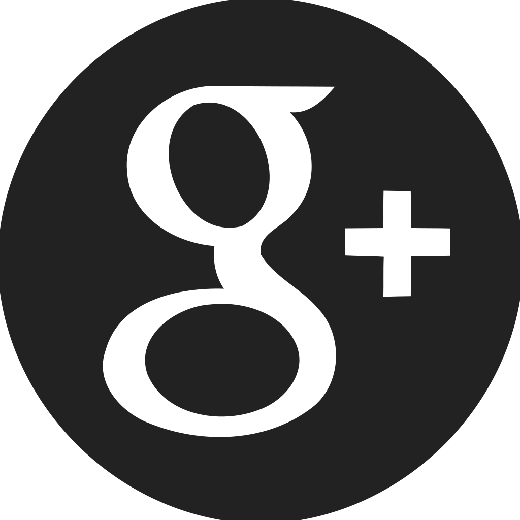 Google Plus Circle Filled Icon